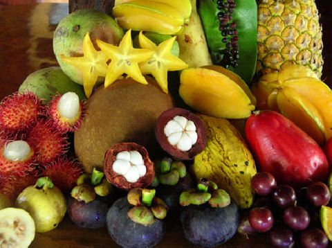 Picking Your Own Tropical Fruit